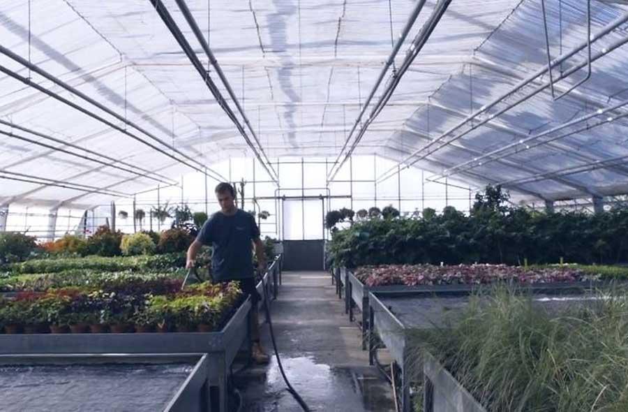 Horticulteur / Horticultrice CFC - pépinière