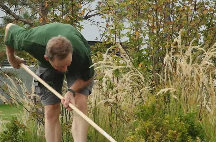 Horticulteur / Horticultrice CFC - paysagisme